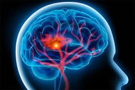 Creierul stăpînul nostru